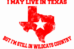 01-I-may-live-in-texas-wildcats-copy