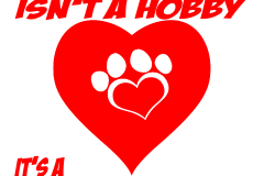 01-rescuing-animals-copy