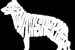 02-german-shepherd-copy