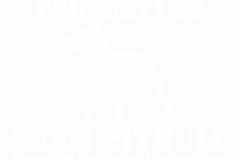02-team-pitbull-home-of-the-copy