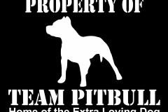 02-team-pitbull-home-of-the-dark-back