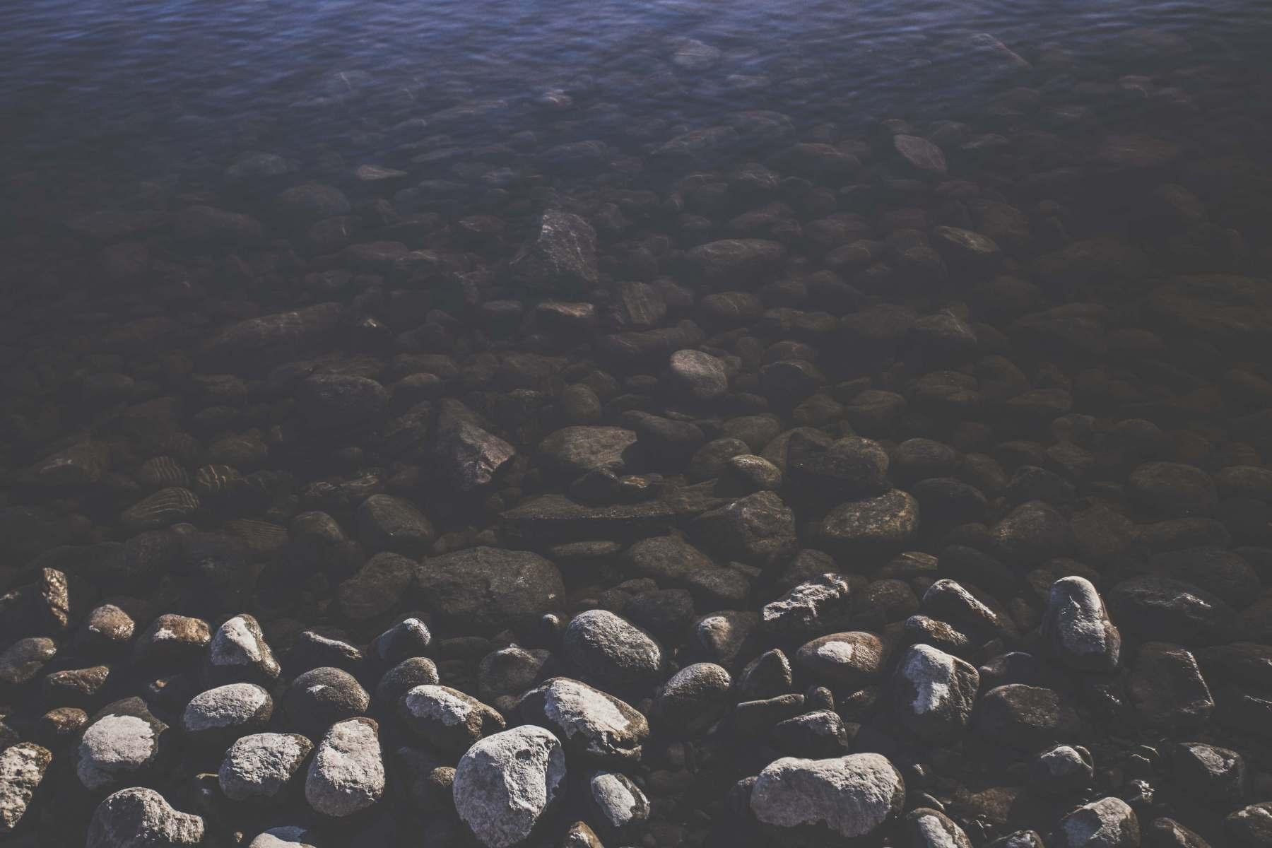 Image291
